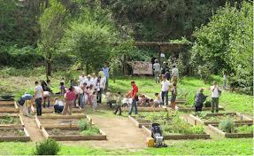 Attivita nel giardino